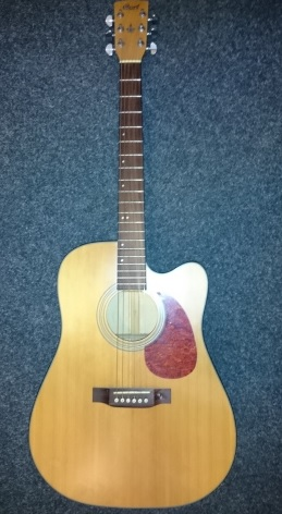 strunné hudební nástroje - kytary