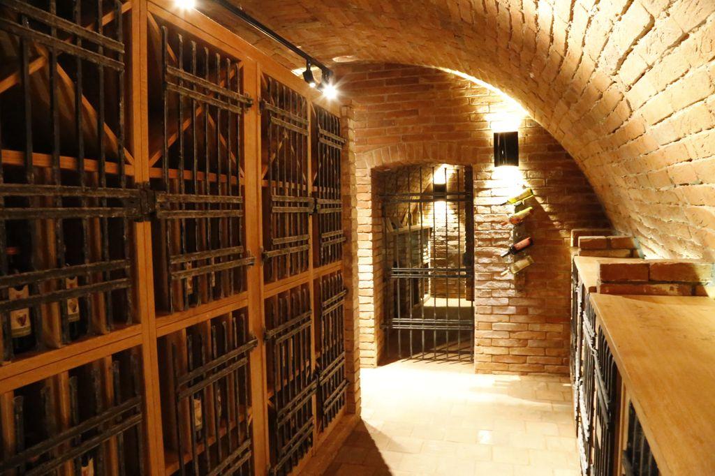 Vinařství, vinný sklep, kvalitní vína z jižní Moravy | Hustopeče, Šakvice