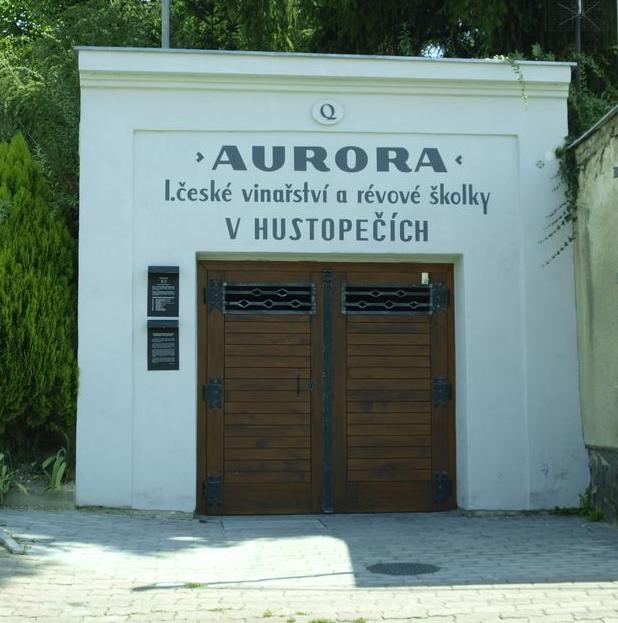 Vinný sklep Jižní Morava, Šakvice