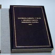 vazby diplomových prací i klasických knih