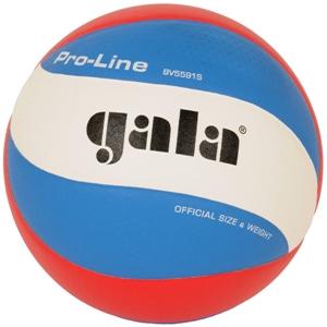 Volejbalový míč Gala Pro-Line BV5591S