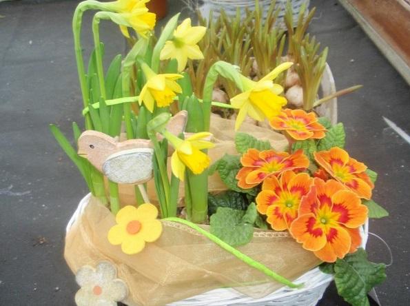 jarní květiny různých druhů