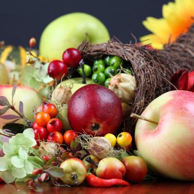 Podzimní zahradnické trhy Flora - Vše podstatné pro zahrádkáře, pěstitele a chalupáře