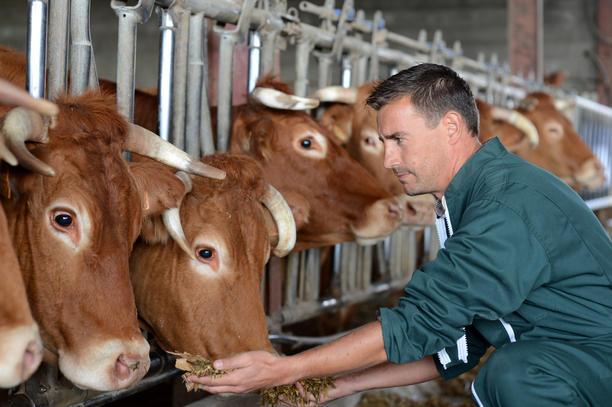 výzkumy v zemědělství