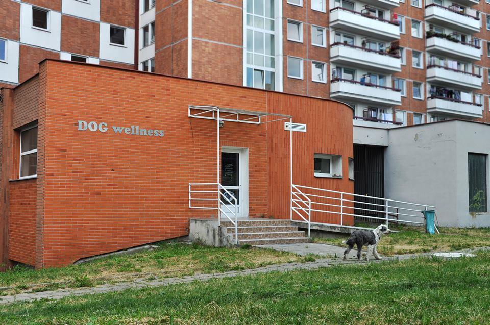 Masáže, koupání, stříhání psů-lázně, salon pro psy Zlín, Zlínský kraj