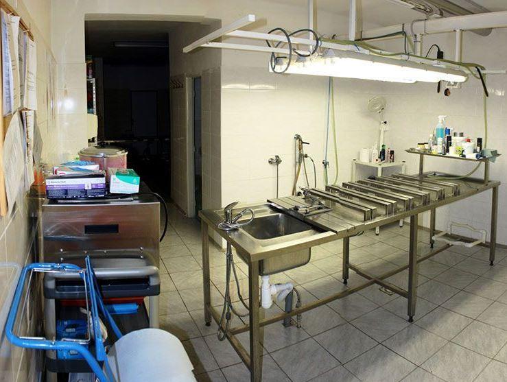 Balzamace – thanatopraxe, úprava zesnulých Litoměřice