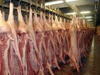 Čerstvé vepřové maso, masné výrobky a vepřové půlky z jatek