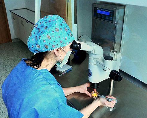 Ženská neplodnost - mimotělní oplodnění IVF, asistovaná reprodukce
