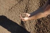 Kamenivo pro stavební účely, melafyr - lom, těžba | Trunov