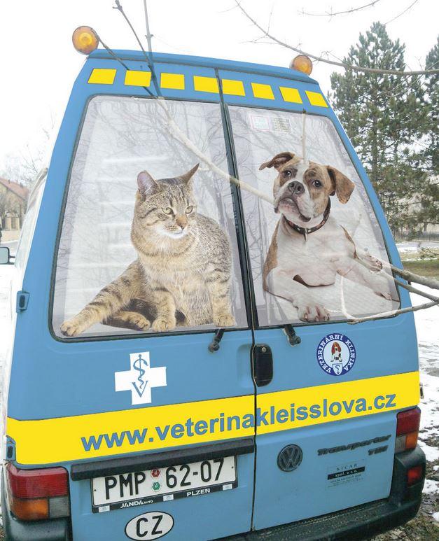 Sanitní služba pro zvířata Plzeň a okolí