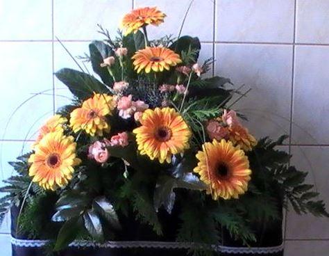 Kremační služby Nový Bor