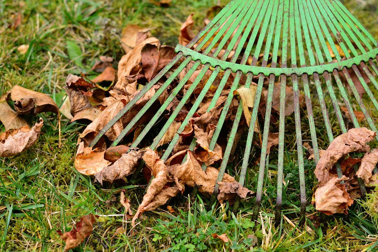 Vyhrabávání listí, jarní a podzimní péče o trávník, Praha