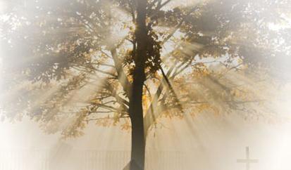 Pohřební ústav - komplexní pohřební služby, včetně zajištění kremace