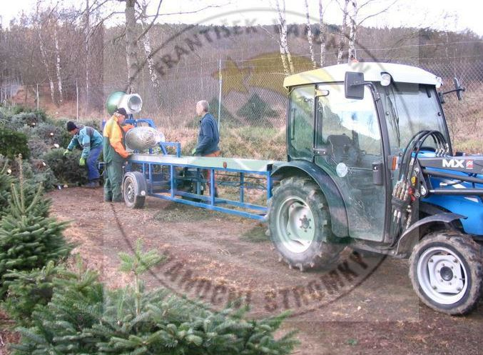 Ruční i strojní balení vánočních stromků