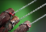 Sling chains