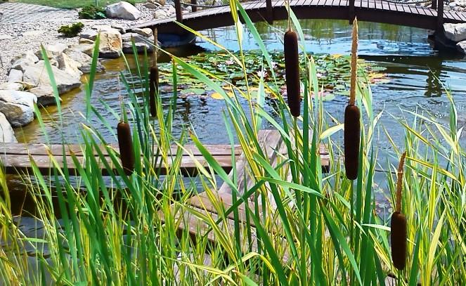 Návrhy zahrad Vsetín, Zlín