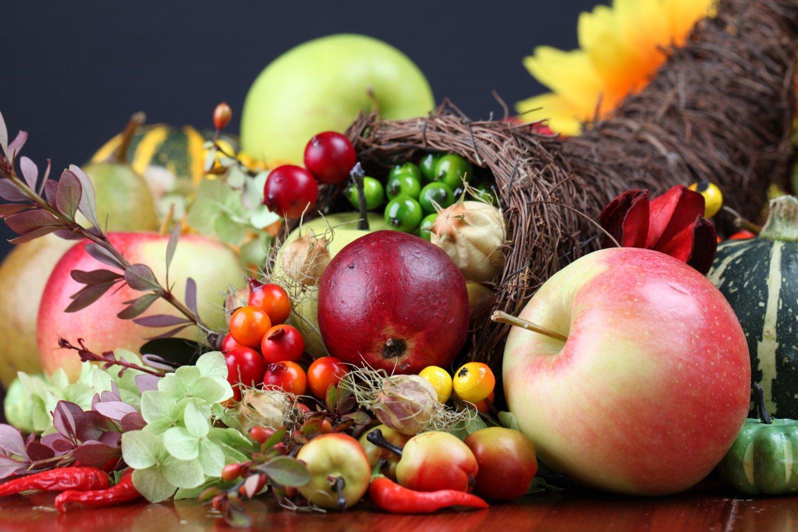 Podzimní etapa Flora Olomouc - široký sortiment rostlin, výpěstků i zahradnických pomůcek