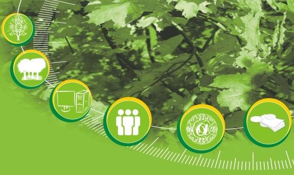 Zpracování lesníckého auditu Vsetín