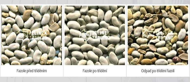 Optické třídiče pro třízení fazolí Zlín