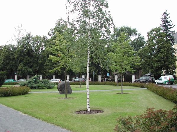 Výsadba stromů a keřů pro obce, města a firmy