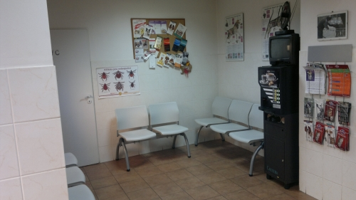 Kosmetický salon pro psy a kočky, stříhání a úprava psů