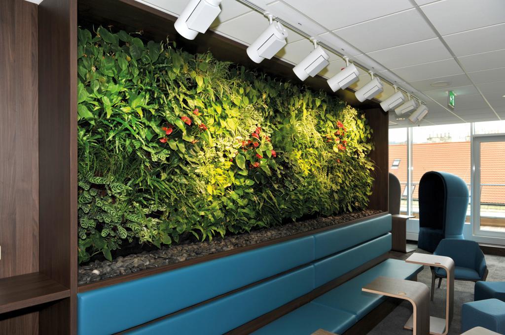Návrh a realizace květinové výzdoby interiérů hotelů, obchodních center, škol nebo kanceláří