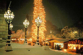 Vánoční zájezdy do Vídně, Prahy, Budapeště