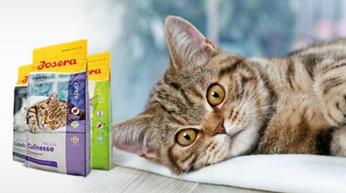 Prémiové krmivo pro všechny kočky Josera Praha