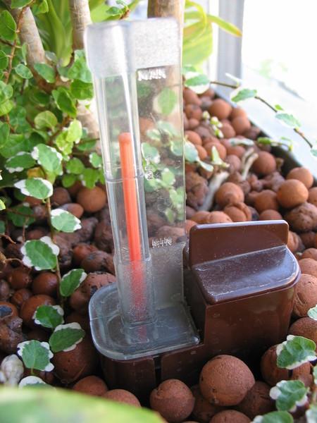 Moderní metoda pěstování rostlin