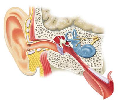 Foniatrie, ORL, sluchadla, vyšetření sluchu Uherské Hradiště