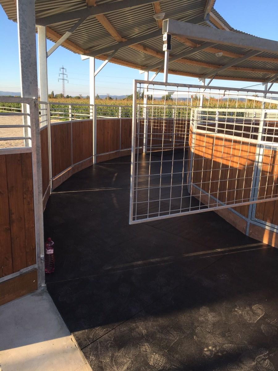 Derby povrchy - podkladové desky pro výcvik, kruhový trénink koní i do stáje