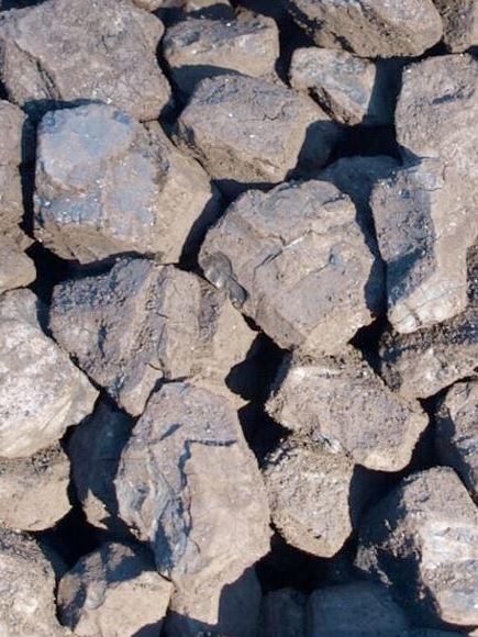 Uhlí detail