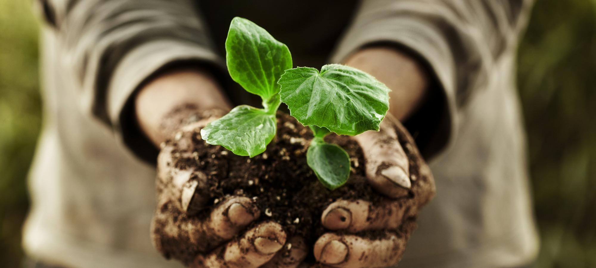 Kompostéry pro domácnost přímo od výrobce Vrbno