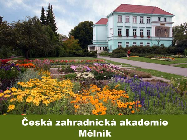 Česká zahradnická akademie Mělník, střední a vyšší odborná škola, SŠ, VOŠ
