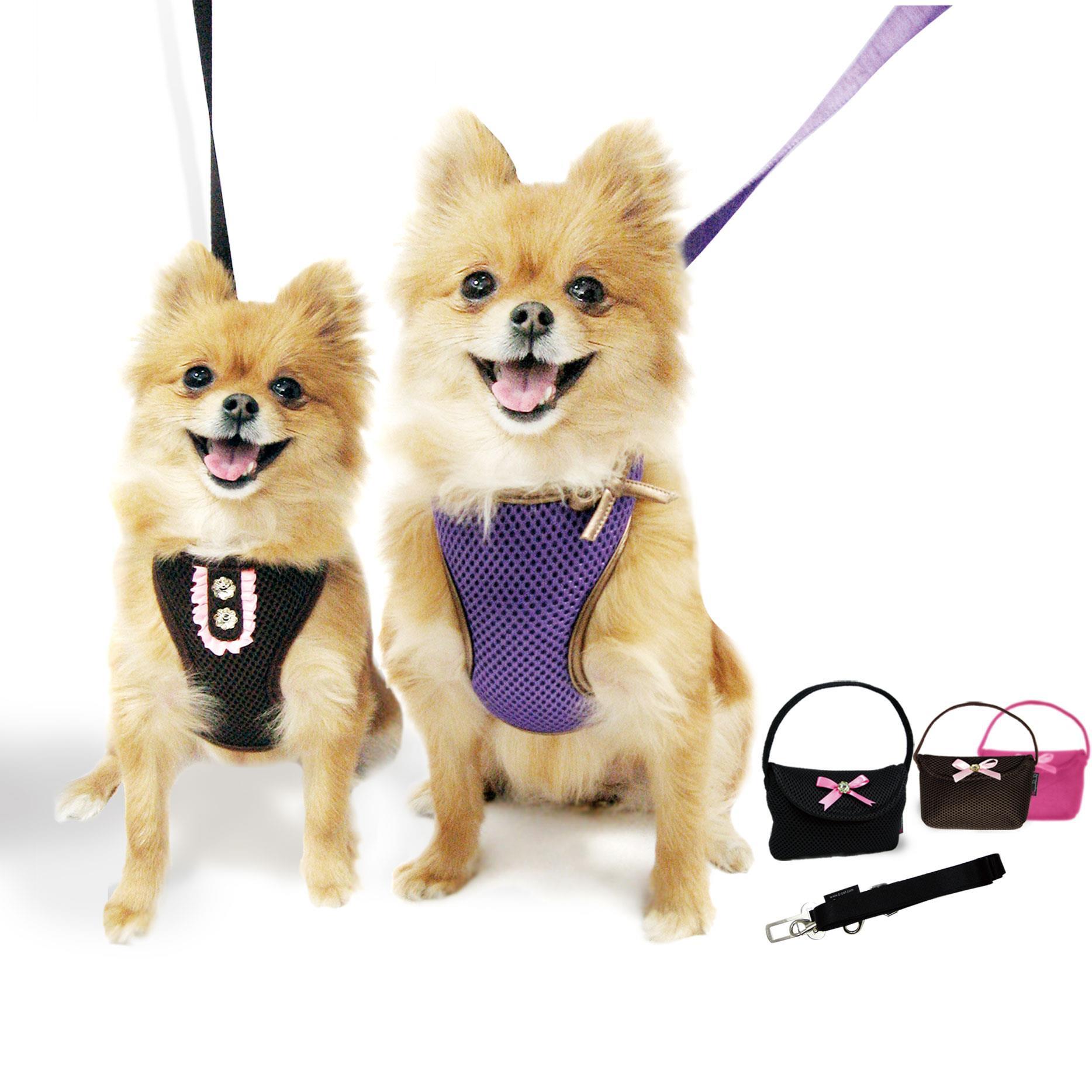Eshop pomůcky pro venčení psa - obojky, vodítka, postroje, kšíry pro psy