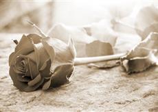 Objednávka kremace a uloženi urny Praha – důstojně s úctou k zemřelému a pozůstalým