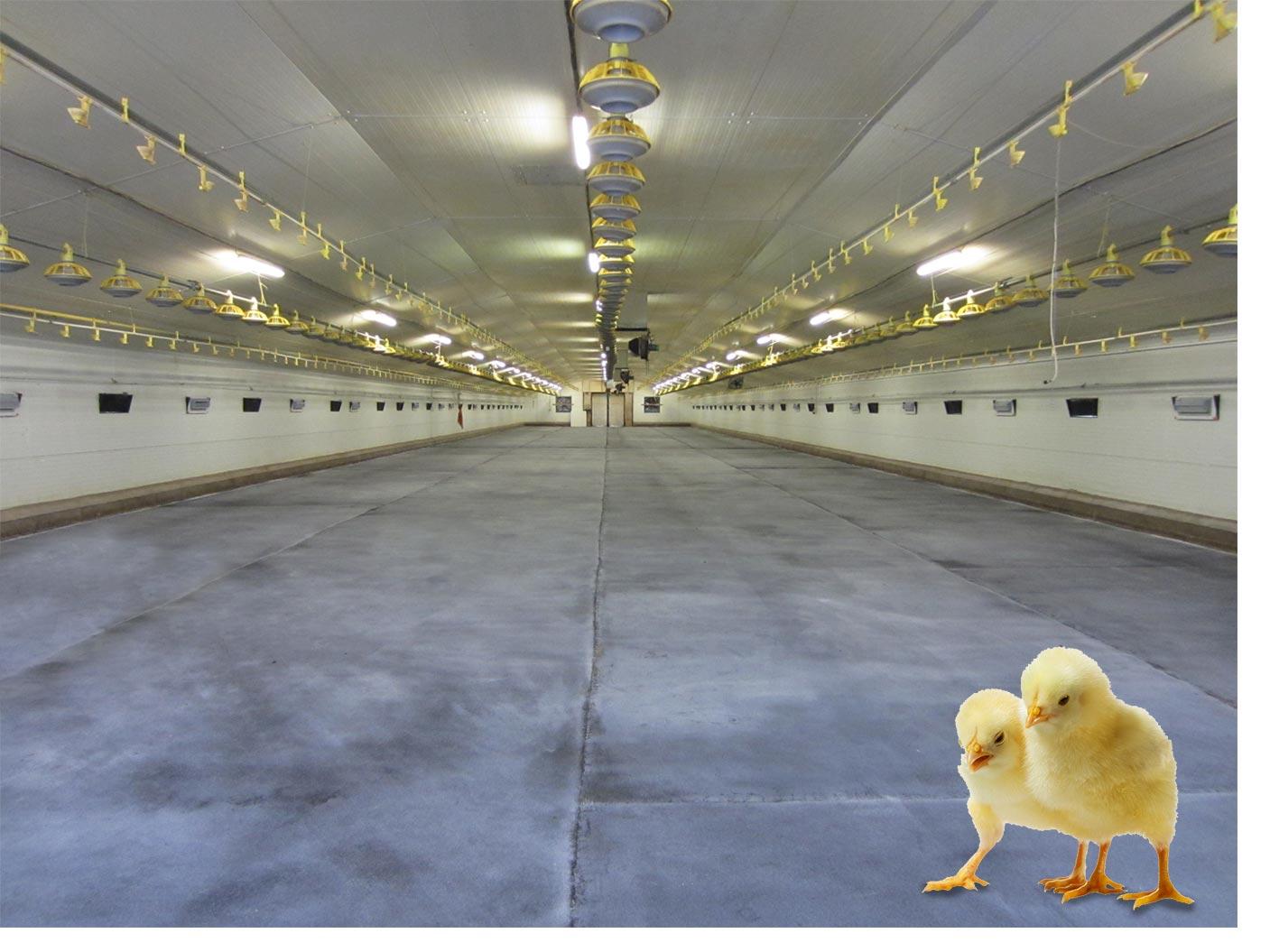 Podlahy pro zemědělce, sklady, haly a stáje pro chovatele drůbeže a dobytka - kravíny, vepříny