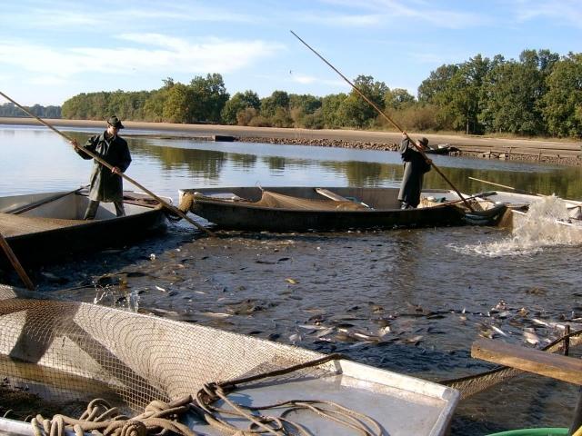 Střední škola rybářská a vodohospodářská Jakuba Krčína v Třeboni