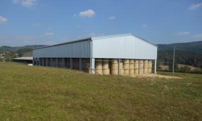 ZD Velké Svatoňovice, produkce mléka, masa, chov krav, zemědělská činnost