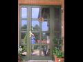 Dřevěná okna, dveře, eurookna - výroba Ostrava, Severní Morava