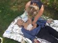 Kurzy první pomoci pro děti v mateřských i na základních školách