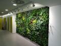 Zelená stěna - vertikální pěstování rostlin