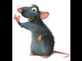 Dezinsekce deratizace hubení hlodavců potkanů krys myší hmyzu
