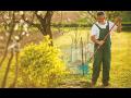 Král - zahradnické práce s.r.o.