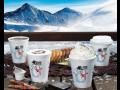 Termo pohárky, kelímky na kávu, čaj nebo punč - vychutnejte si své oblíbené nápoje vždy teplé