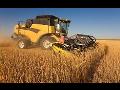Zemědělství Kralovice