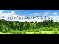 Ekologické poradenství, audit životního prostředí, odstraňování ekologických zátěží