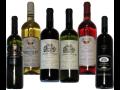 Prodej českých a moravských vín eshop