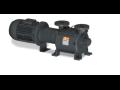 Prodej a autorizovaný servis pro vývěvy, dmychadla, kompresory, vakuové pumpy a systémy