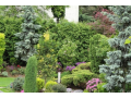 Sadovnická činnost Litoměřice – zhotovení návrhů, výběr rostlin, realizace